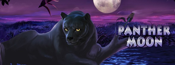 Online hrací automat Panther Moon
