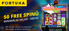 50 her zdarma na automat Magical Stacks od online casina Fortuna Vegas